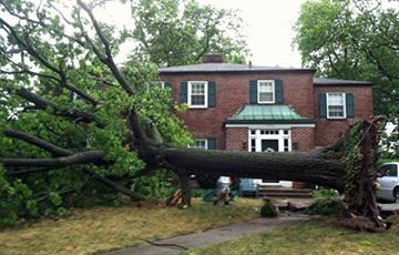 storm-damage-2